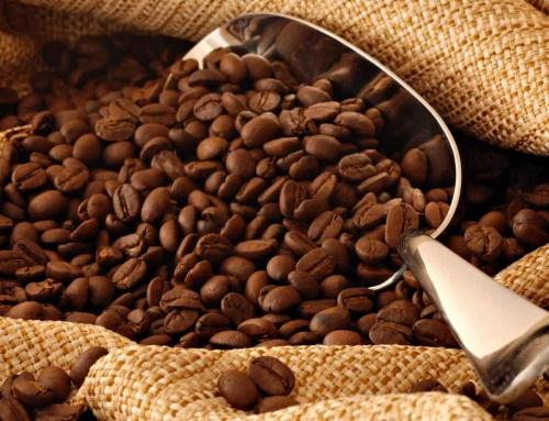 A tökéletes csésze kávé, 1. lecke: Hogyan készítsünk jobb kávét?