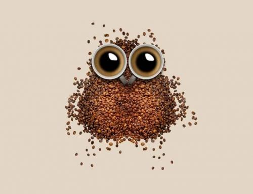 Minden, amit a robusta kávéról tudnod érdemes